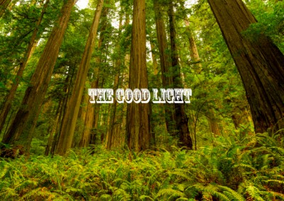 Charlotte_Production_Company_The_Good_Light-211